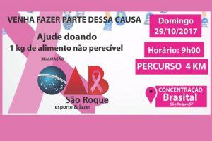 1ª Caminhada Movimento Rosa, domingo 29/10, na Brasital